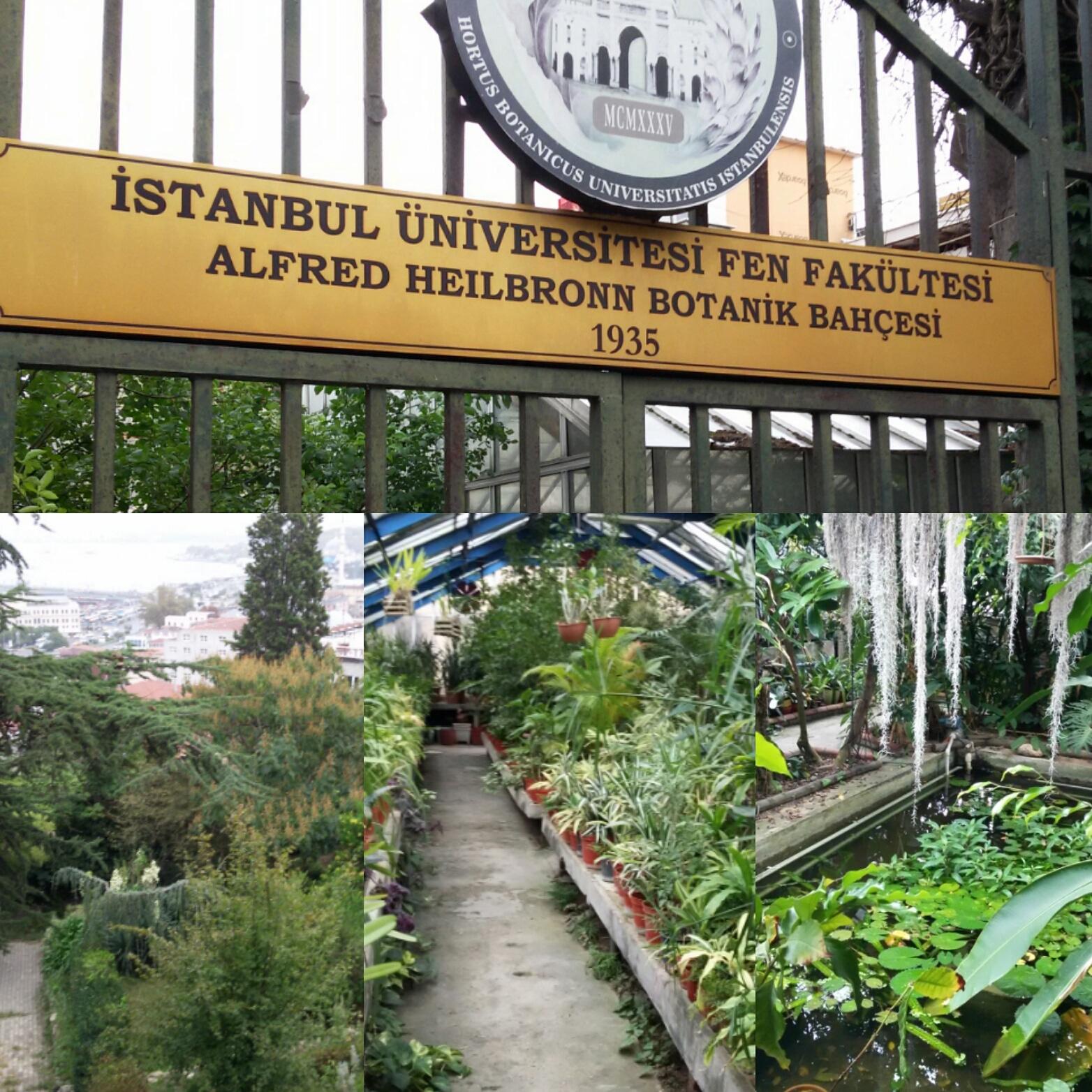 Alter Botanischer Garten Stadt Zürich: Reiseleiter Istanbul – Ihr